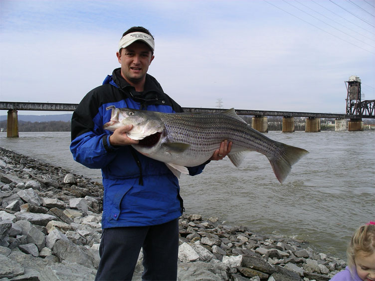 Chattanooga fishing forum hall of fame for Chickamauga fishing report