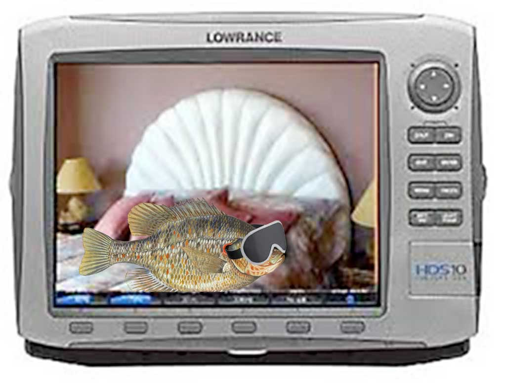 Viewing a thread - Spotting shell beds on a lowrance hook 5