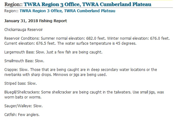 Viewing a thread twra fishing report jan 31st for Twra fishing report