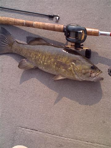 3 and a half pound smallie from lower end of Chick.