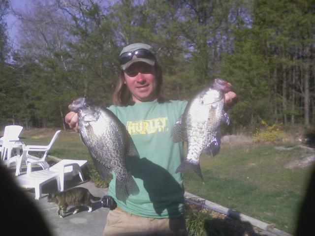 Crappie from a canoe trip a few years ago