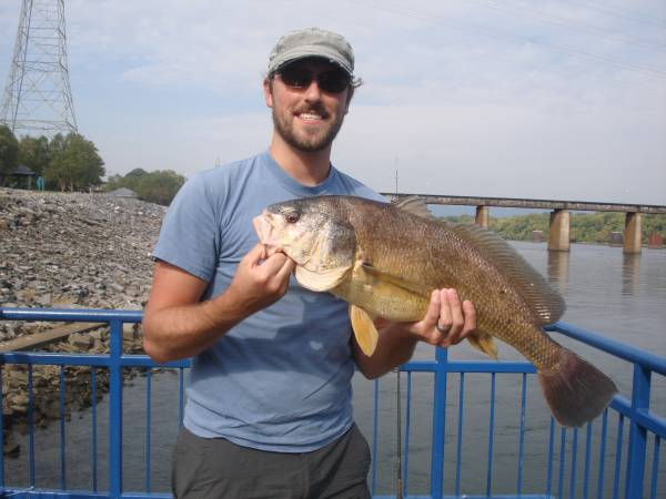 29in Drum - Chick Dam