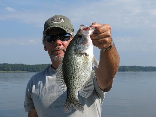 14.2 inch crappie...9-13