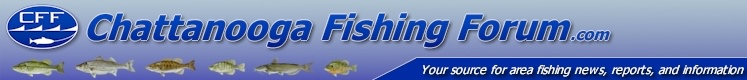 Chattanooga Tennessee Fishing Forum